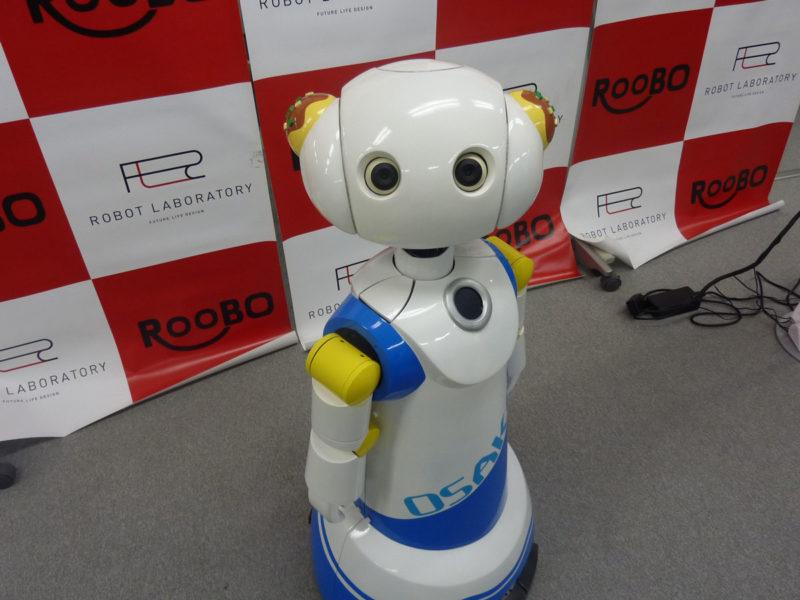 robot robovie