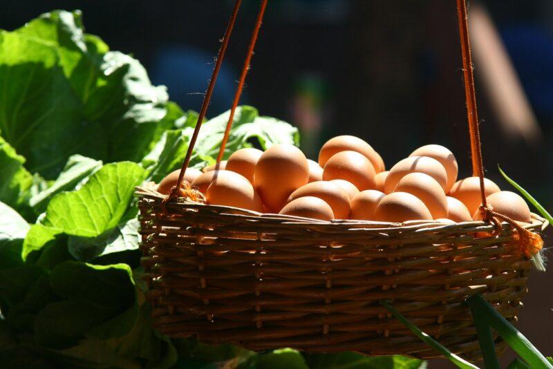 telur setengah matang